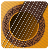Your Guitar - Virtual Guitar Pro icon
