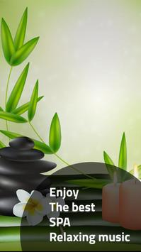 Relaxing Music : SPA screenshot 6
