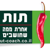 אופיר בן דוד אימון מנהלים icon
