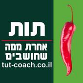 ליטל שדה icon