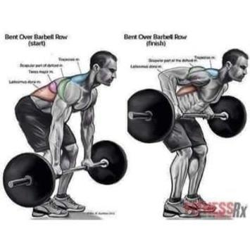Proper Bodybuilding And Weight Lifting Techniques For Android Apk Download