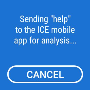 ICE screenshot 2