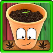 MyWeed - Weed Growing Game icon