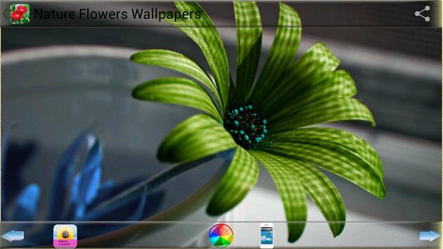 Nature Flowers Wallpapers screenshot 3
