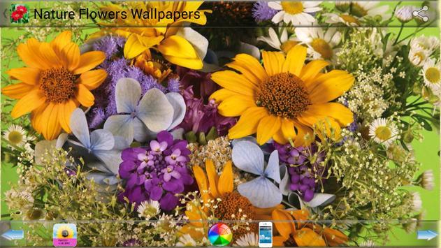 Nature Flowers Wallpapers screenshot 4
