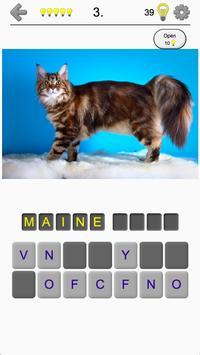 Cats Quiz - Guess Photos of All Popular Cat Breeds poster