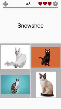 Cats Quiz - Guess Photos of All Popular Cat Breeds screenshot 1
