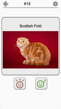 Cats Quiz - Guess Photos of All Popular Cat Breeds screenshot 9