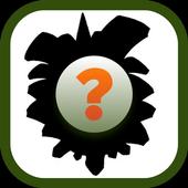 Pika-Poke icon