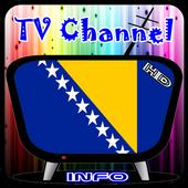 Info TV Channel Bosnia HD icon