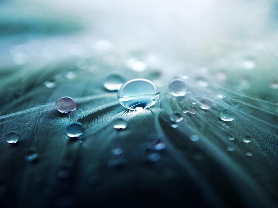 Rain Water Drop Live Wallpaper Poster