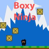 Boxy Ninja icon