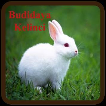 Budidaya Kelinci Screenshot