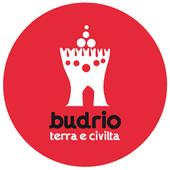 Budrio icon