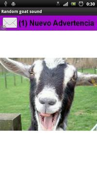 Random Goat sound poster