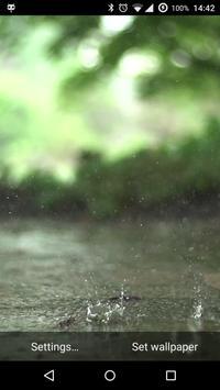 Real Rain Live Wallpaper poster