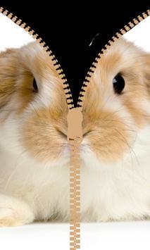 Bunny Clever Zipper Locker screenshot 4
