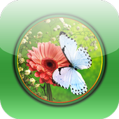 Beautiful Flowers Hd Wallpapers icon