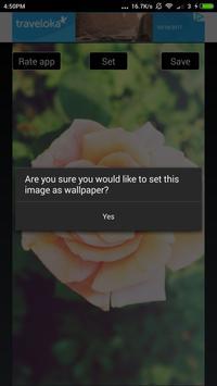 Beautiful Flowers Hd Wallpapers screenshot 19