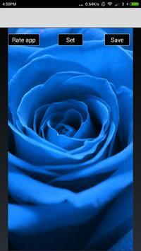 Beautiful Flowers Hd Wallpapers screenshot 26