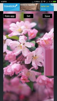 Beautiful Flowers Hd Wallpapers screenshot 6