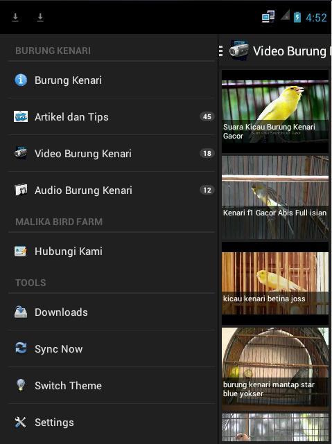 Burung Kenari For Android Apk Download