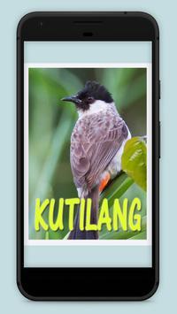 Suara burung kutilang apk screenshot