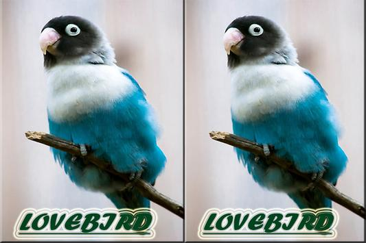 Master Ocehan Lovebirds Terbaik screenshot 4