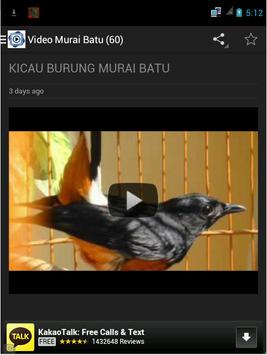 Burung Murai Batu screenshot 4
