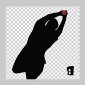 Catch It icon