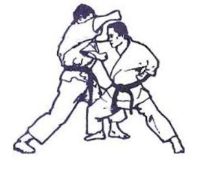 Lern Martial Arts Techniques screenshot 5