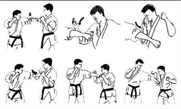 Lern Martial Arts Techniques screenshot 3