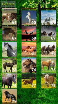 Horses Puzzle apk screenshot