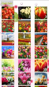 Tulips Puzzle apk screenshot