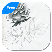 Learn To Draw Flower + Video Tutorial icon