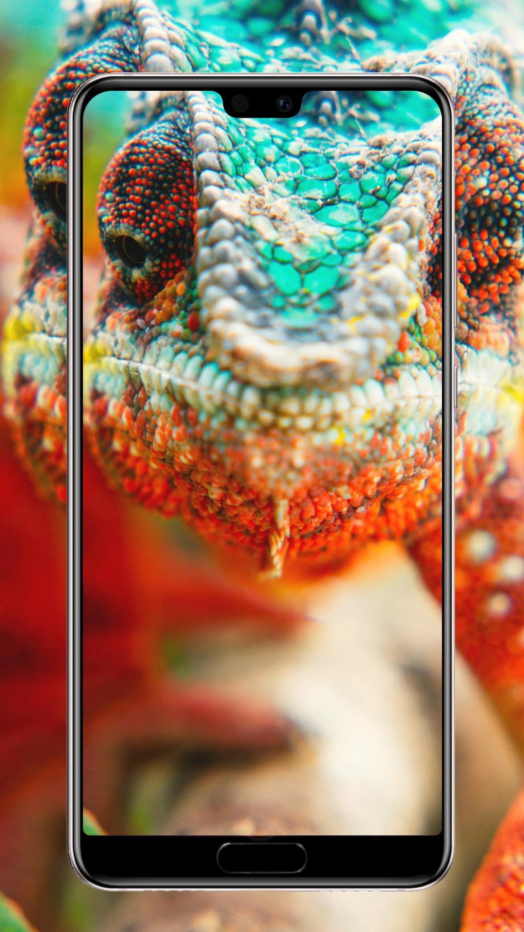 4k Wallpapers Wallpaper Hd High Quality для андроид