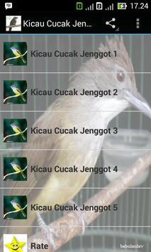 Kicau Cucak Jenggot Master poster