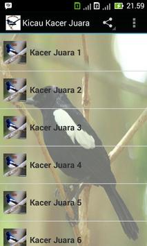 Kicau Kacer Juara poster