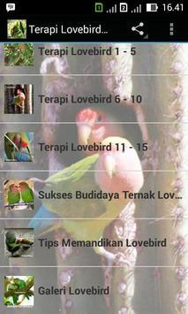Terapi Lovebird Master poster