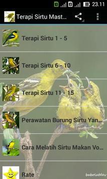 Terapi Sirtu Master poster