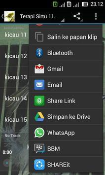 Terapi Sirtu Master screenshot 3
