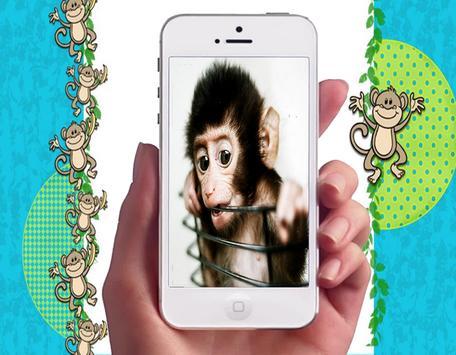 Baby Monkey Wallpapers screenshot 1