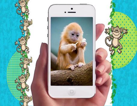 Baby Monkey Wallpapers apk screenshot