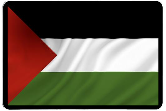 The New Flags Of Palastine poster