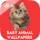 Baby Animals Wallpapers HD icon