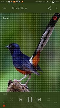Koleksi Master Kicau Burung apk screenshot