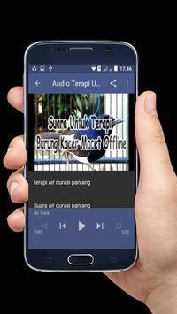 Suara Untuk Terapi Burung Kacer Macet Offline screenshot 2