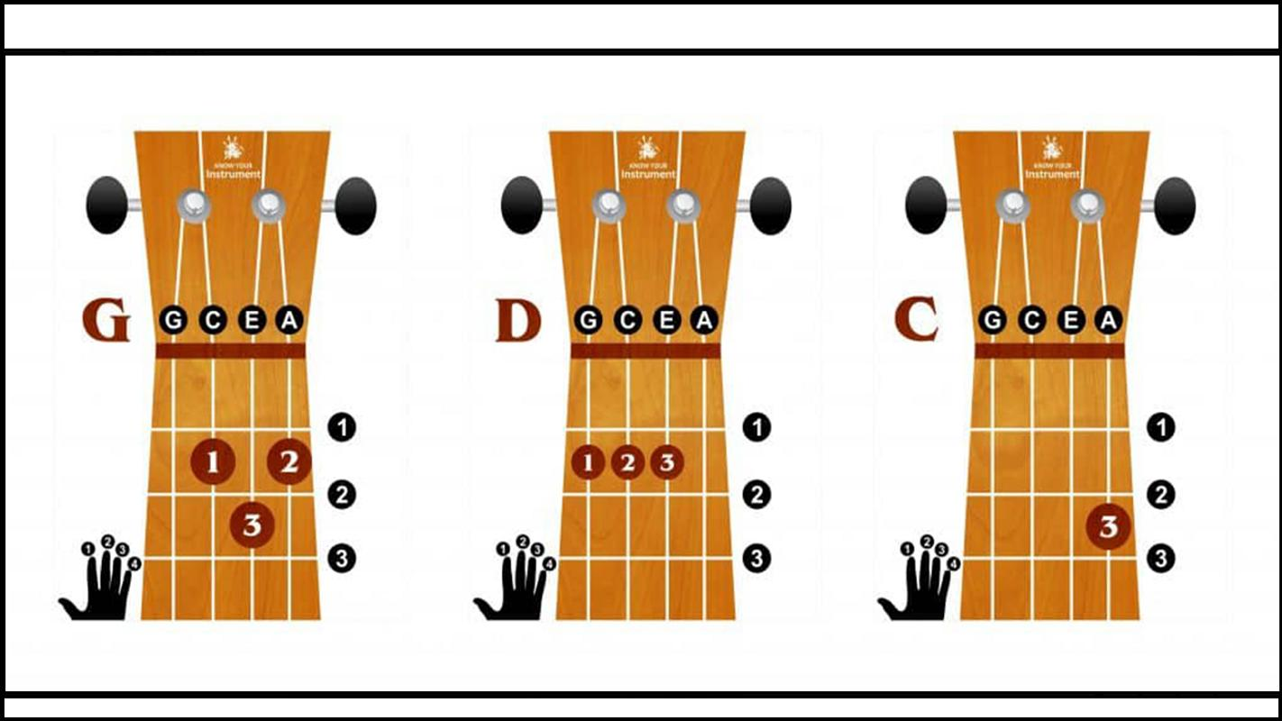 Basic Bass Guitar Chords For Android Apk Download