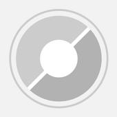 Basic Notes icon