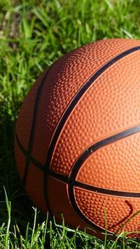 basketball ball live wallpaper poster